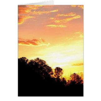 神聖な日の出 カード