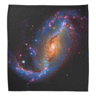 禁止された渦状銀河NGC 1672年 バンダナ