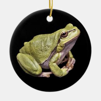 禅のカエルの薄緑のTreefrogの黒のオーナメント セラミックオーナメント
