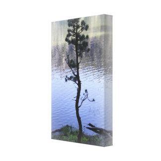 禅の反射の水および木 キャンバスプリント