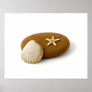 禅の自然の海の貝の星の魚の小石 ポスター