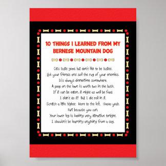 私がバーニーズ・マウンテン・ドッグから学んだおもしろいな事 ポスター