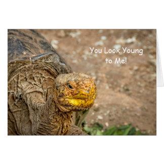 私に若く見ます! ガラパゴスのカメの誕生日 カード