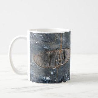 私のための化石のマグ コーヒーマグカップ
