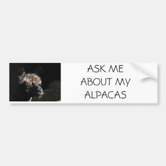 私のアルパカについて私に尋ねて下さい バンパーステッカー