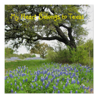 """""""私のハートテキサス州に""""の完全なポスター属します ポスター"""