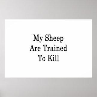 私のヒツジは殺すために訓練されます ポスター
