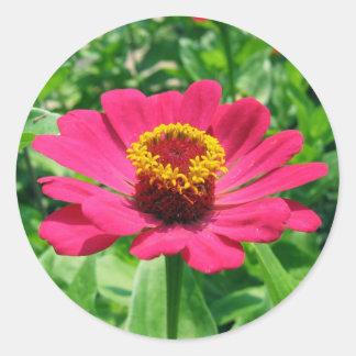 私のピンクの花 ラウンドシール