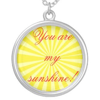 私の日光です! シルバープレートネックレス