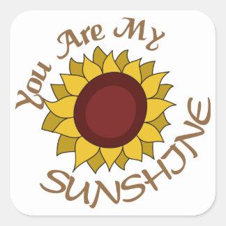 私の日光です スクエアシール