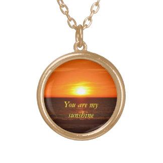 私の日光のネックレスです ゴールドプレートネックレス