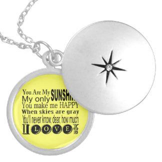 私の日光のネックレスです シルバープレートネックレス