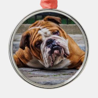 私の気難しい犬はブルドッグを言っています! メタルオーナメント