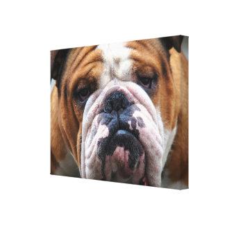 私の気難しい犬はブルドッグを!言っています!! キャンバスプリント