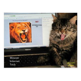 私の猫はMITのねずみを捕る猫のインターネットの技術で調査します ポストカード
