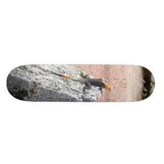 私の石 カスタムスケートボード