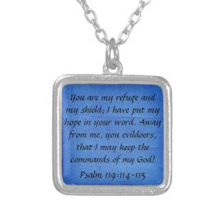 私の非難および私の盾の聖書は賛美歌の119:114を作詩します シルバープレートネックレス