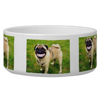 私の食糧ボールを食べること幸せな幸せなスマイル犬