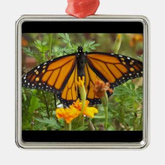 私の(昆虫)オオカバマダラ、モナークの蝶優れた正方形のオーナメント メタルオーナメント