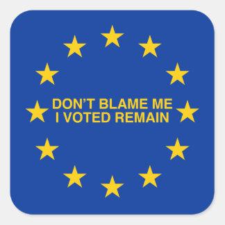 私の、私投票しましたRemainのために責任にしないで下さい スクエアシール