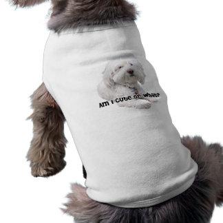 私はかわいいですまたは何か。 Bichon Frise犬の写真 ペット服