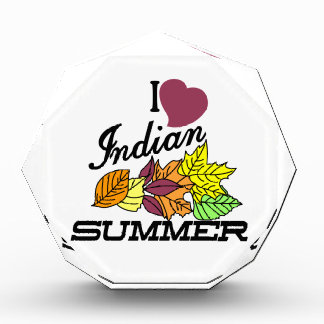 私はインディアンサマーを愛します 表彰盾