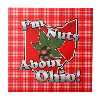 私はオハイオ州のおもしろいな赤いバックアイズのナットについてくだらないです タイル