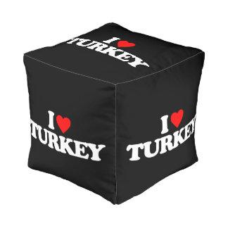 私はトルコを愛します プーフ