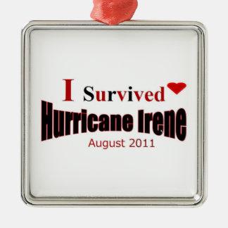 私はハリケーンのアイリーンのオーナメントを生き延びました メタルオーナメント