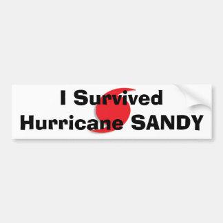 私はハリケーンのサンディのバンパーステッカーを生き延びました バンパーステッカー