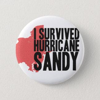 私はハリケーンのサンディのTシャツを生き延びました 5.7CM 丸型バッジ