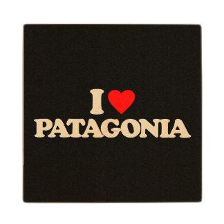 私はパタゴニアを愛します ウッドコースター