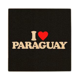 私はパラグアイを愛します ウッドコースター