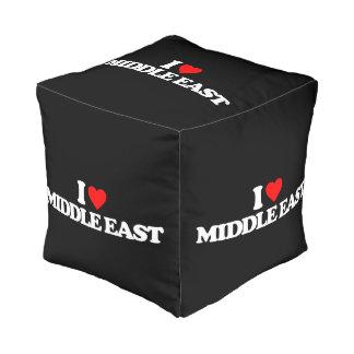 私は中東を愛します プーフ