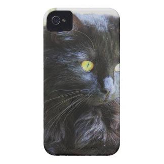 私は子猫会います!  黒猫はiPhoneの場合を支配します Case-Mate iPhone 4 ケース