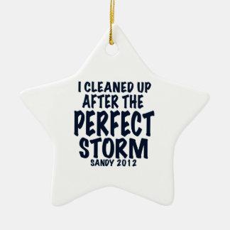 私は完全な嵐、サンディの後で2012年きれいになりました、 セラミックオーナメント