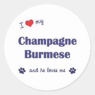 私は愛しますシャンペンの私のビルマ語(オス猫)を ラウンドシール