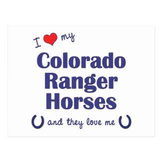 私は愛します私のコロラド州のレーンジャーの馬(多数の馬)を ポストカード