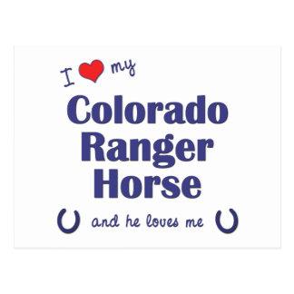 私は愛します私のコロラド州のレーンジャーの馬(雄の馬)を ポストカード