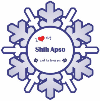 私は愛します私のシーズー(犬) Apso (オス犬)を 写真彫刻オーナメント
