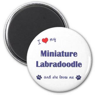 私は愛します私のミニチュアLabradoodle (メス犬)を マグネット