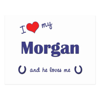 私は愛します私のモーガン(雄の馬)を ポストカード
