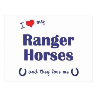 私は愛します私のレーンジャーの馬(多数の馬)を ポストカード