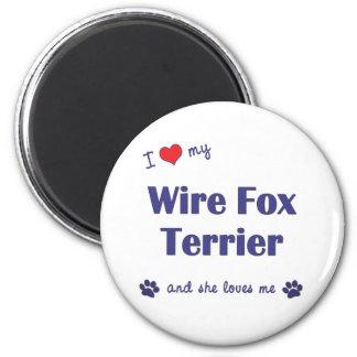 私は愛します私のワイヤーフォックステリア犬(メス犬)を マグネット