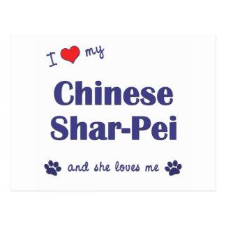 私は愛します私の中国のなShar-Pei (メス犬)を ポストカード