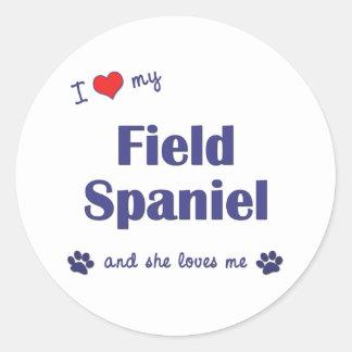 私は愛します私の分野スパニエル犬(メス犬)を ラウンドシール