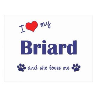 私は愛します私のBriard (メス犬)を ポストカード