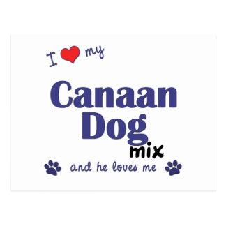 私は愛します私のCanaan犬の組合せ(オス犬)を ポストカード