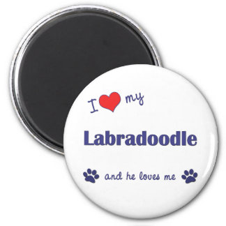 私は愛します私のLabradoodle (オス犬)を マグネット