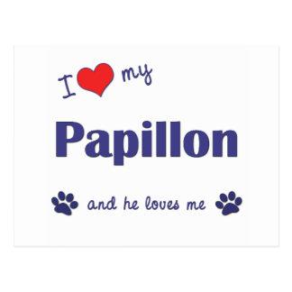 私は愛します私のPapillon (オス犬)を ポストカード